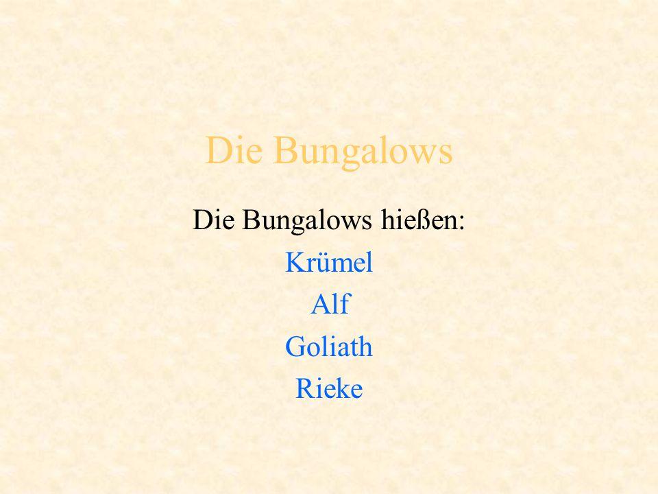 Die Bungalows Die Bungalows hießen: Krümel Alf Goliath Rieke