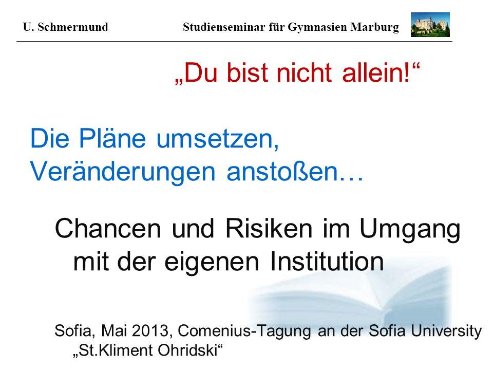 Du bist nicht allein! Die Pläne umsetzen, Veränderungen anstoßen… Chancen und Risiken im Umgang mit der eigenen Institution Sofia, Mai 2013, Comenius-