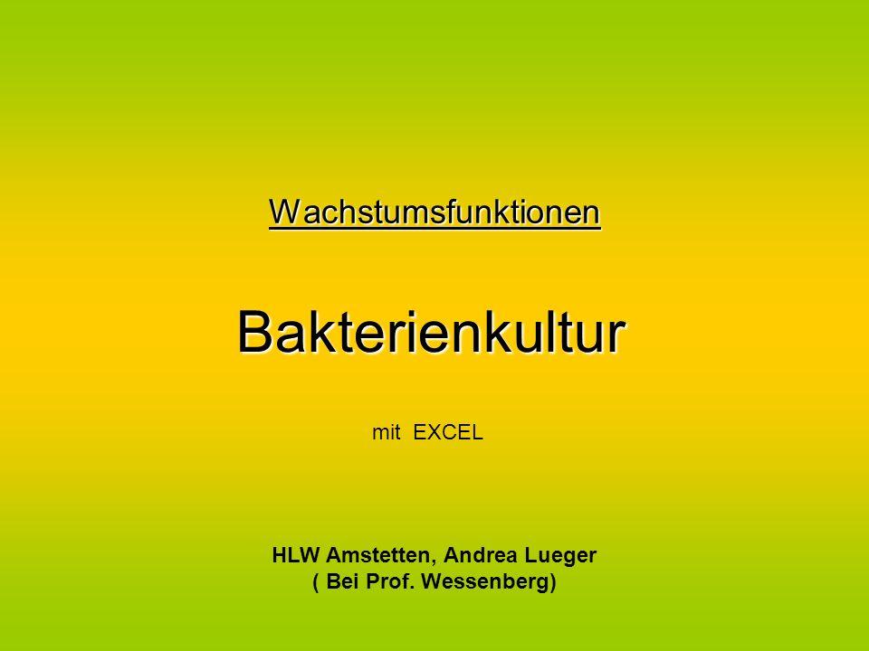 Wachstumsfunktionen Bakterienkultur HLW Amstetten, Andrea Lueger ( Bei Prof. Wessenberg) mit EXCEL