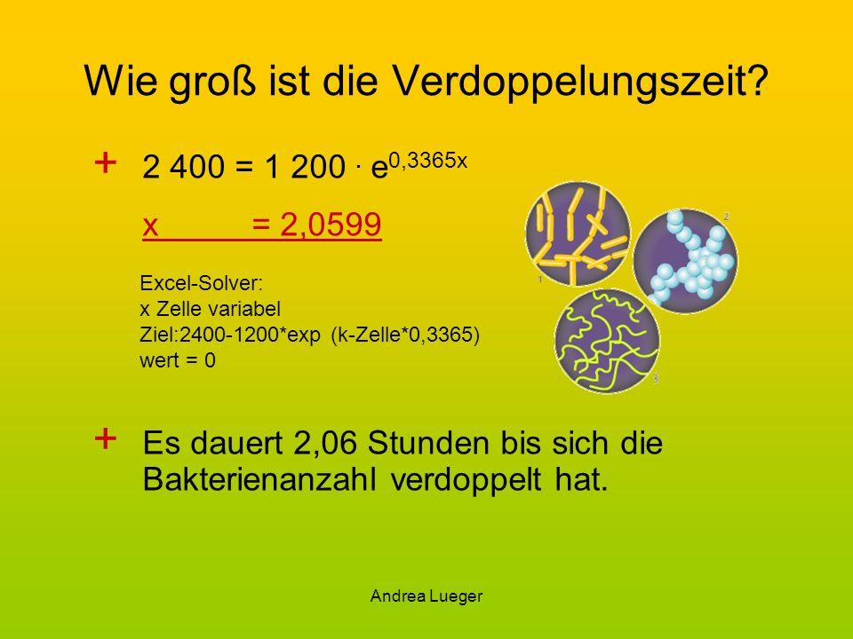 Andrea Lueger Wie groß ist die Verdoppelungszeit? + 2 400 = 1 200. e 0,3365x x= 2,0599 + Es dauert 2,06 Stunden bis sich die Bakterienanzahl verdoppel