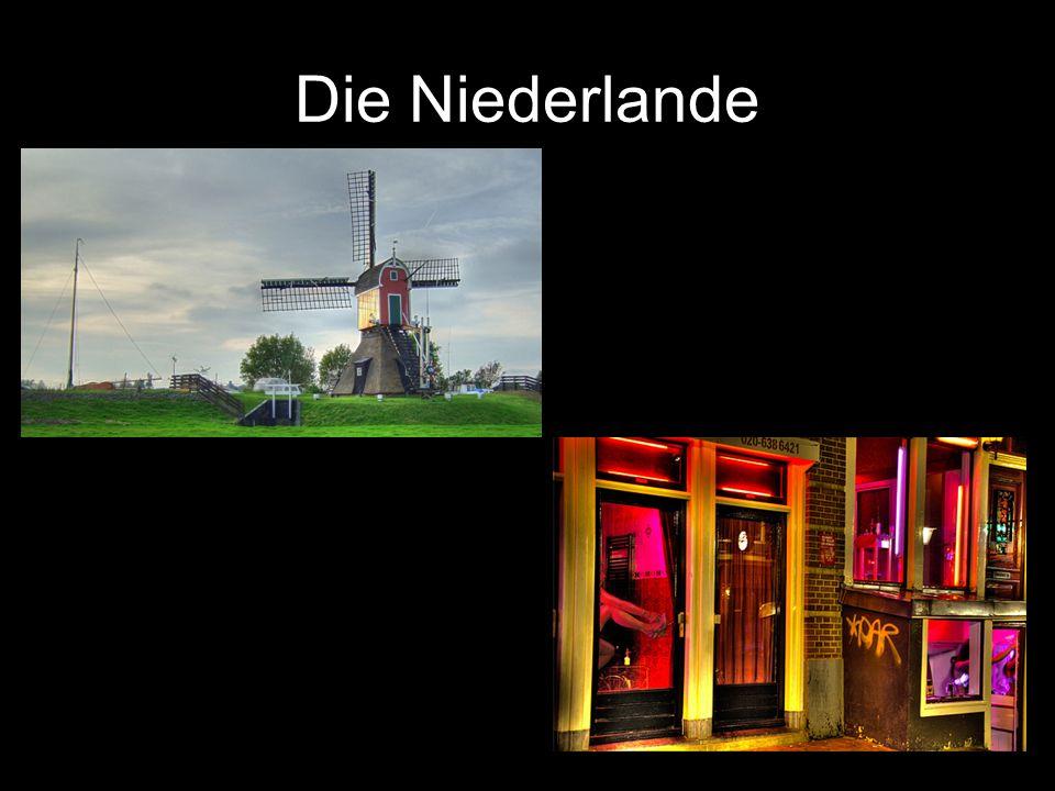 * 40% von den Niederlanden ist unter dem Meeresspiegel und 3 große Flüße: Maas, Rhein und Schelde