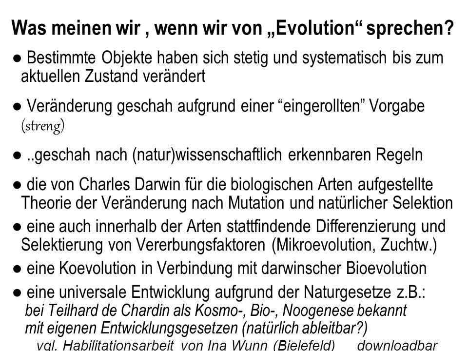 Was meinen wir, wenn wir von Evolution sprechen.