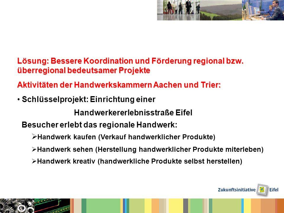 Lösung: Bessere Koordination und Förderung regional bzw. überregional bedeutsamer Projekte Aktivitäten der Handwerkskammern Aachen und Trier: Schlüsse