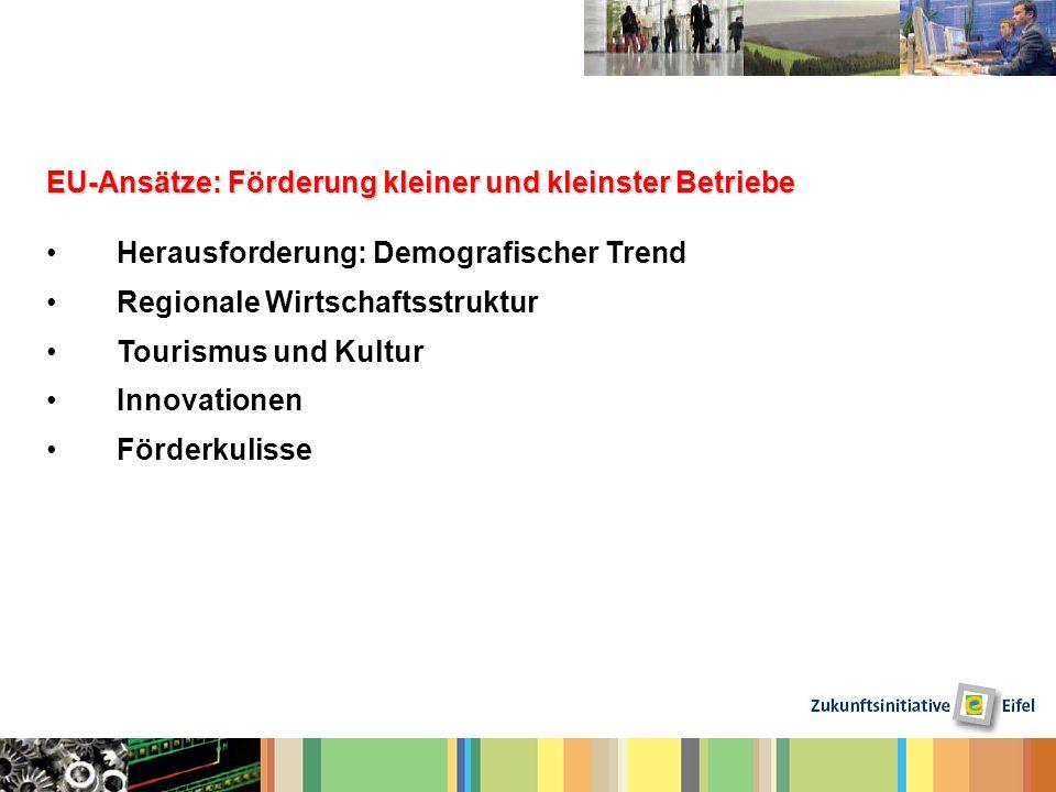 EU-Ansätze: Förderung kleiner und kleinster Betriebe Herausforderung: Demografischer Trend Regionale Wirtschaftsstruktur Tourismus und Kultur Innovati