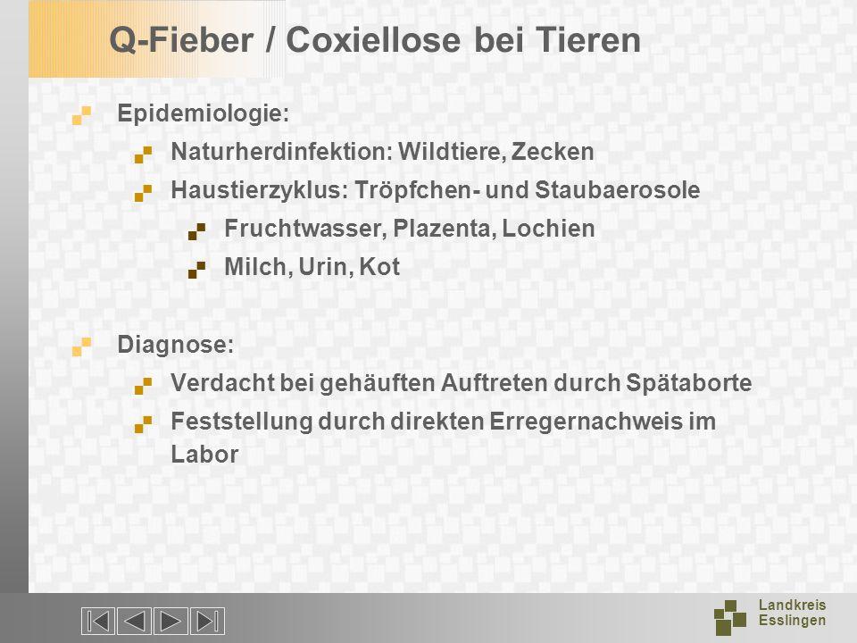 Landkreis Esslingen Q-Fieber / Coxiellose bei Tieren Epidemiologie: Naturherdinfektion: Wildtiere, Zecken Haustierzyklus: Tröpfchen- und Staubaerosole