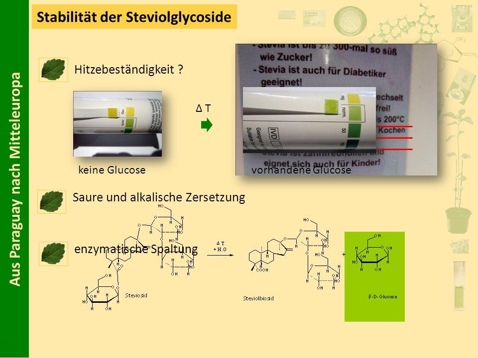 Aus Paraguay nach Mitteleuropa Stabilität der Steviolglycoside Hitzebeständigkeit ? Δ T Saure und alkalische Zersetzung keine Glucosevorhandene Glucos