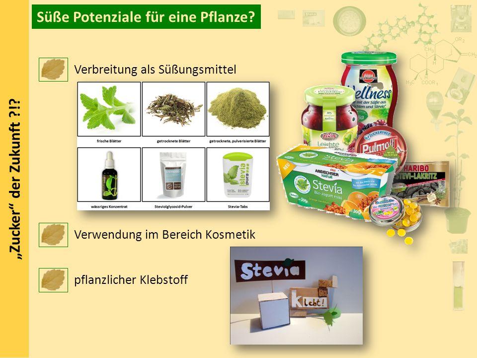 Zucker der Zukunft ?!? Süße Potenziale für eine Pflanze? Verbreitung als Süßungsmittel Verwendung im Bereich Kosmetik pflanzlicher Klebstoff