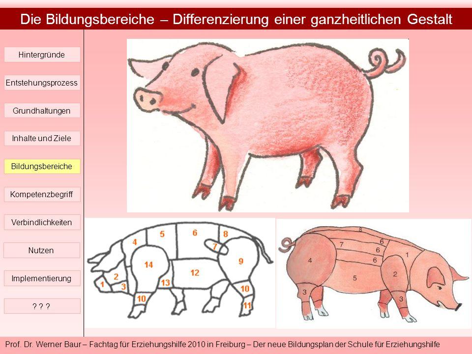 Prof. Dr. Werner Baur – Fachtag für Erziehungshilfe 2010 in Freiburg – Der neue Bildungsplan der Schule für Erziehungshilfe Die Bildungsbereiche – Dif