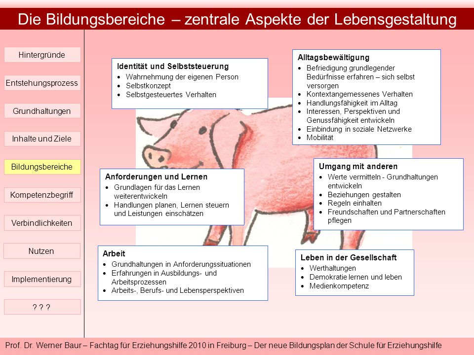 Prof. Dr. Werner Baur – Fachtag für Erziehungshilfe 2010 in Freiburg – Der neue Bildungsplan der Schule für Erziehungshilfe Die Bildungsbereiche – zen