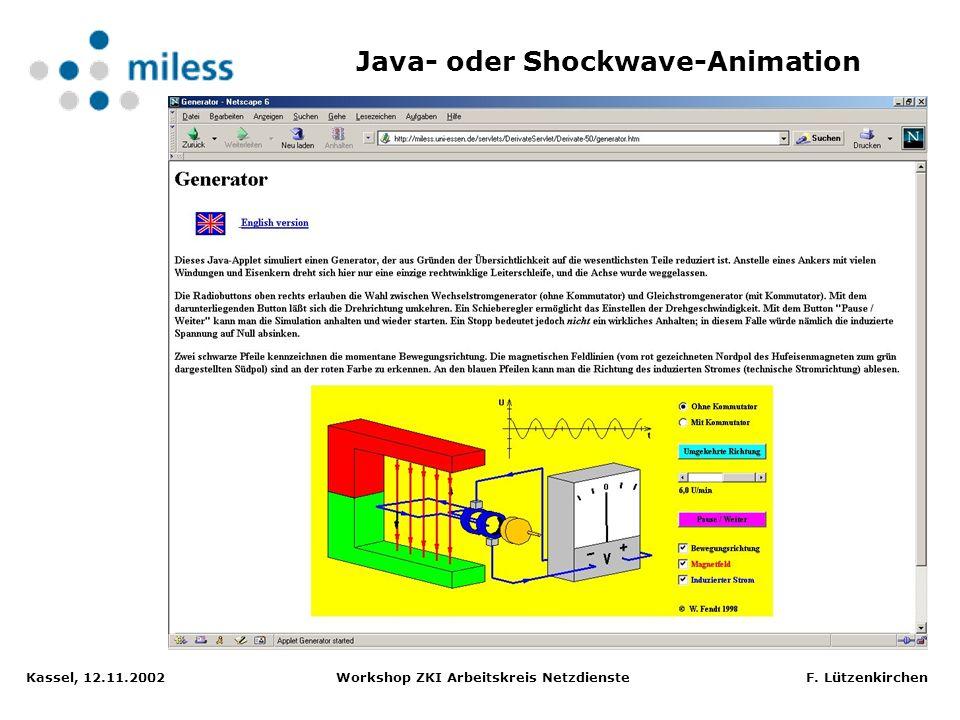Kassel, 12.11.2002 Workshop ZKI Arbeitskreis Netzdienste F. Lützenkirchen Dissertation in LaTeX, Anzeige-Applet