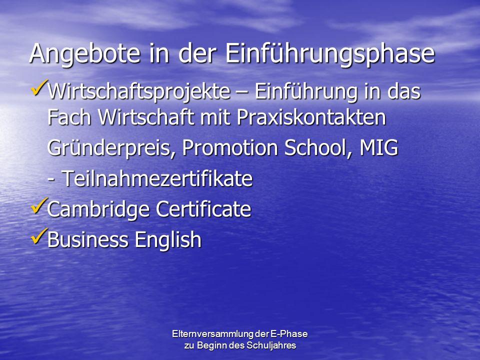 Angebote in der Einführungsphase Wirtschaftsprojekte – Einführung in das Fach Wirtschaft mit Praxiskontakten Wirtschaftsprojekte – Einführung in das F