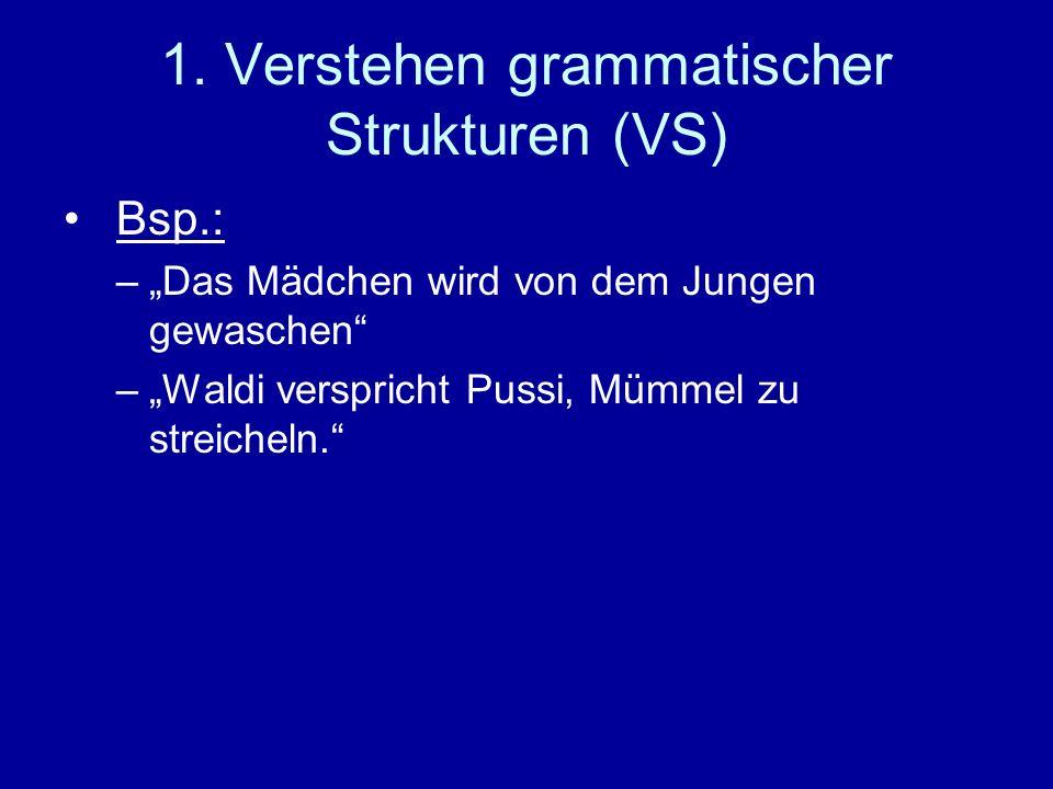 1. Verstehen grammatischer Strukturen (VS) Bsp.: –Das Mädchen wird von dem Jungen gewaschen –Waldi verspricht Pussi, Mümmel zu streicheln.