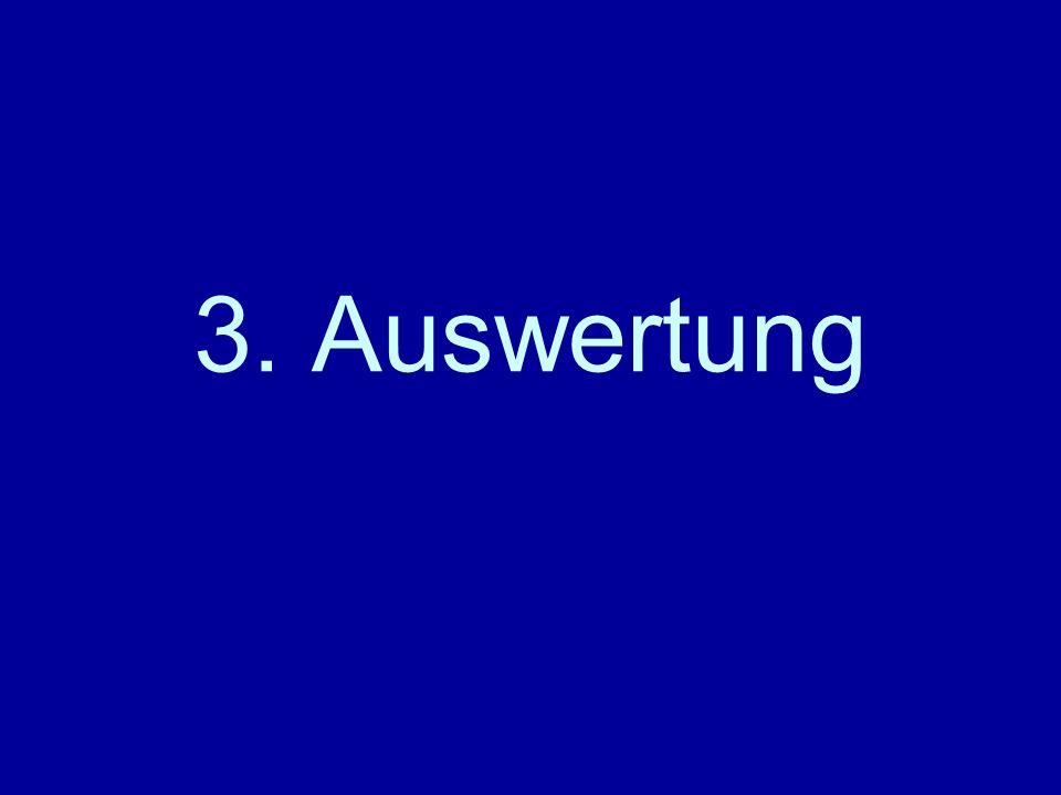 3. Auswertung