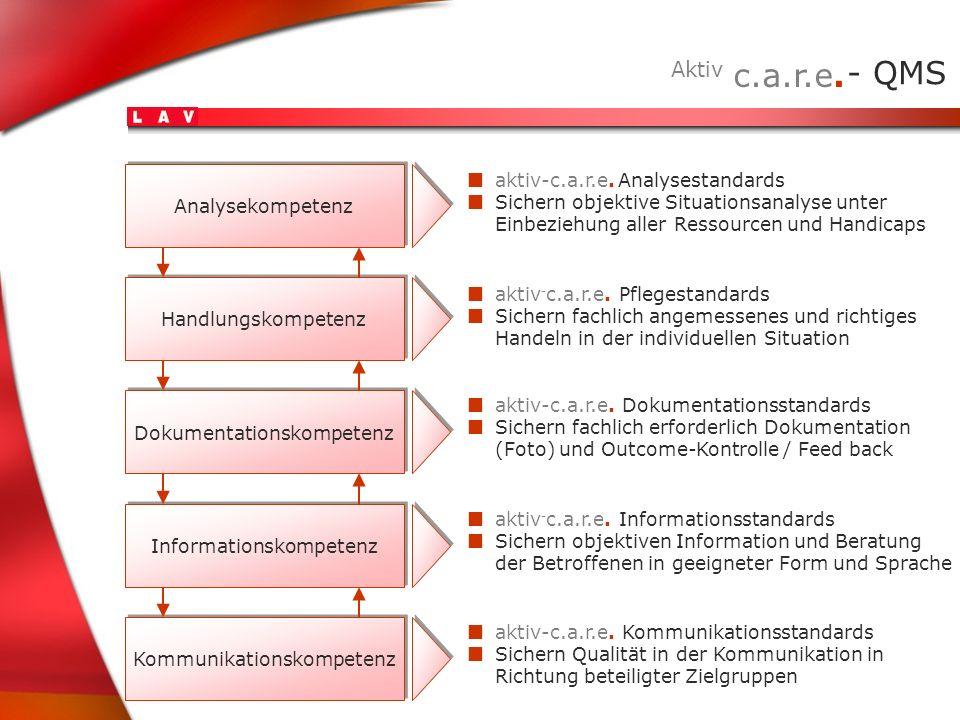 Analysekompetenz Handlungskompetenz Dokumentationskompetenz Informationskompetenz Kommunikationskompetenz Aktiv c.a.r.e. - QMS aktiv-c.a.r.e. Analyses