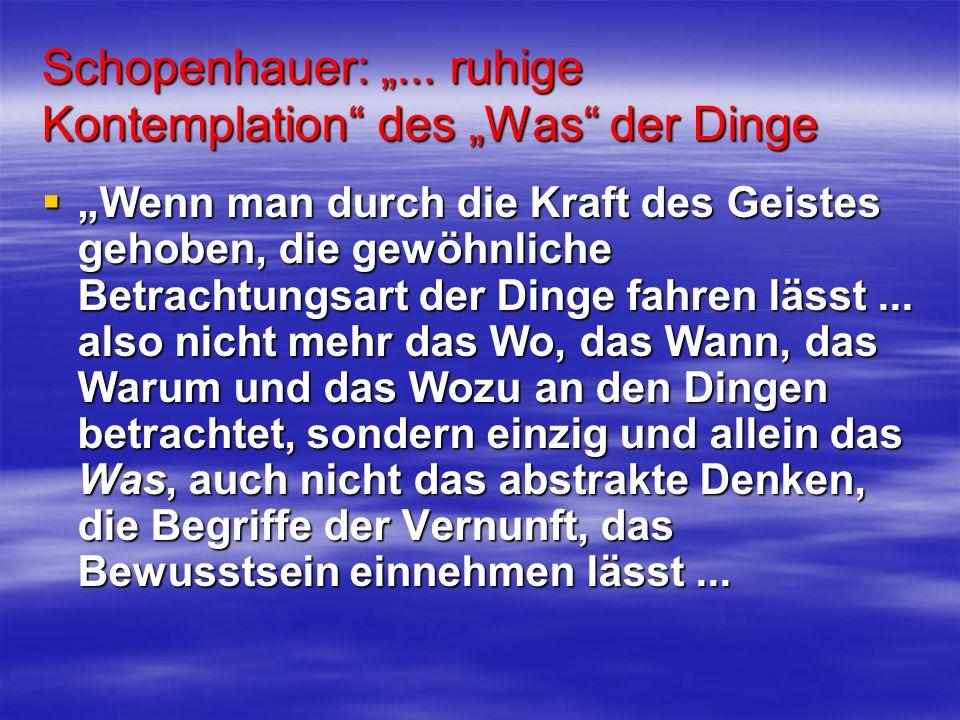 Schopenhauer:... ruhige Kontemplation des Was der Dinge Wenn man durch die Kraft des Geistes gehoben, die gewöhnliche Betrachtungsart der Dinge fahren