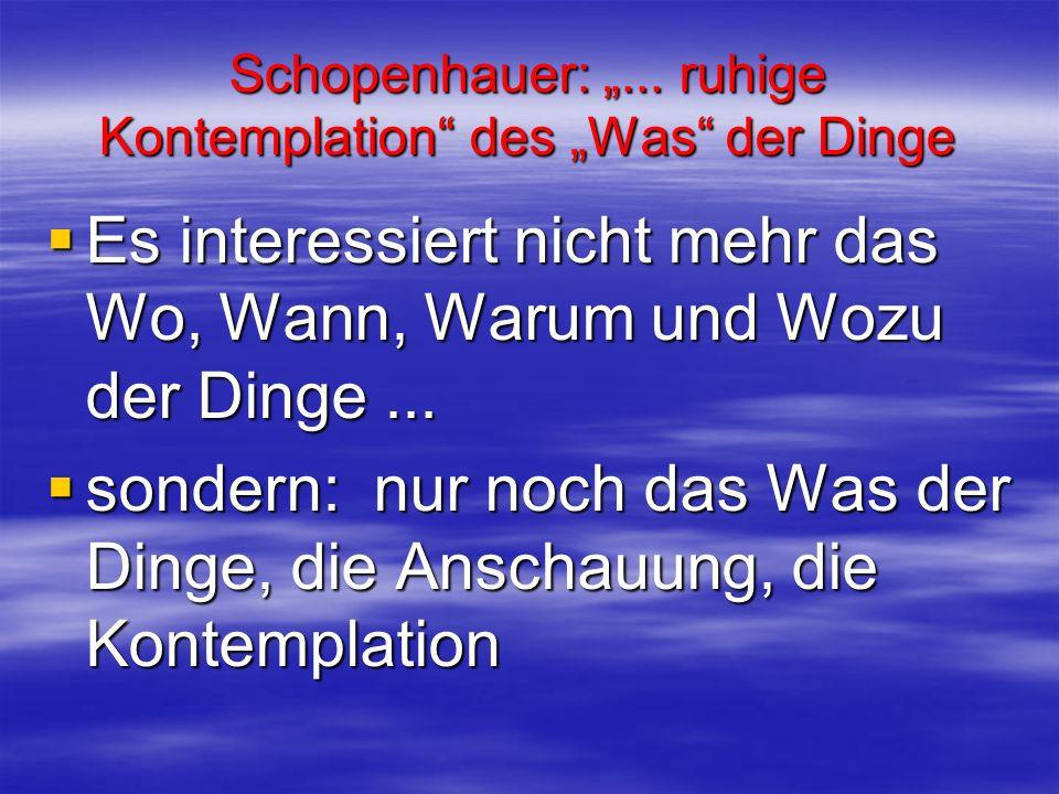 Schopenhauer:... ruhige Kontemplation des Was der Dinge Es interessiert nicht mehr das Wo, Wann, Warum und Wozu der Dinge... Es interessiert nicht meh
