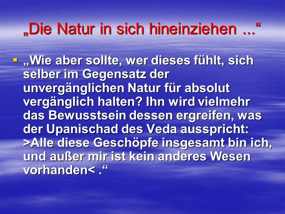 Die Natur in sich hineinziehen... Wie aber sollte, wer dieses fühlt, sich selber im Gegensatz der unvergänglichen Natur für absolut vergänglich halten