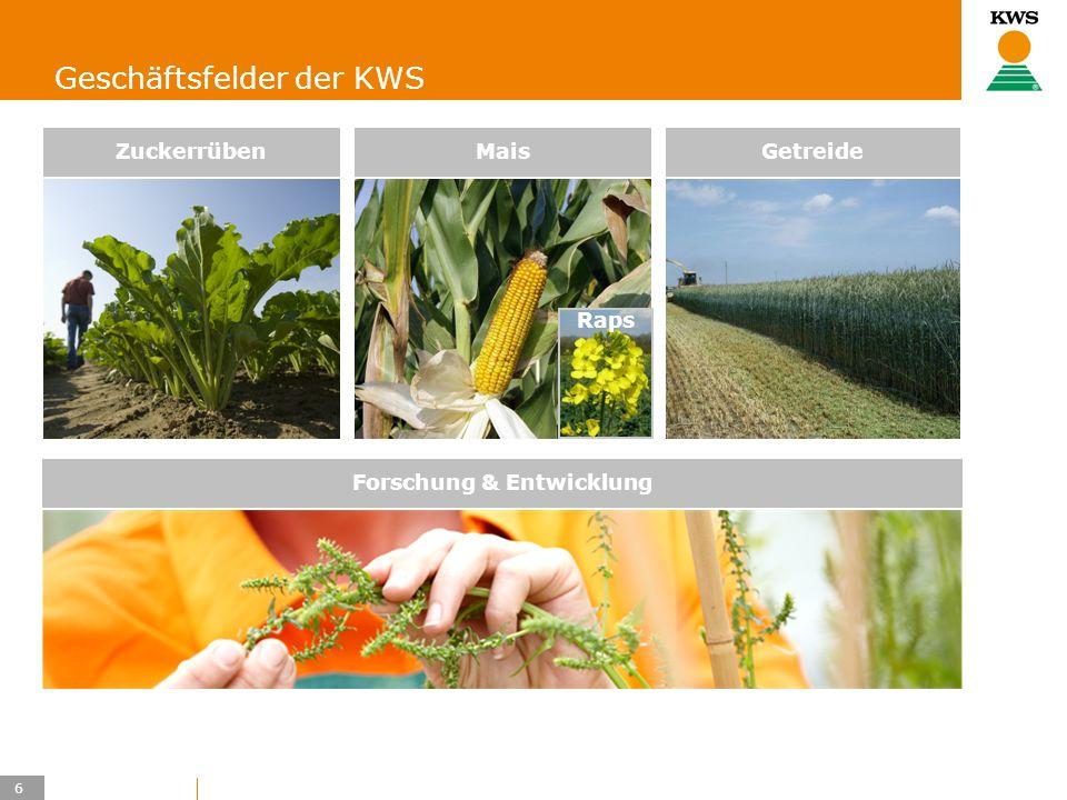 6 KWS UK-LT/HO Geschäftsfelder der KWS Forschung & Entwicklung GetreideMais Raps Zuckerrüben
