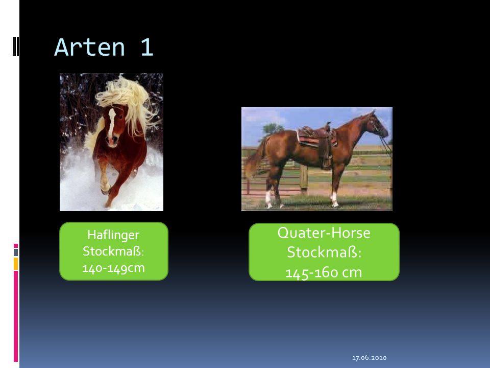 Arten 1 17.06.2010 Haflinger Stockmaß: 140-149cm Quater-Horse Stockmaß: 145-160 cm