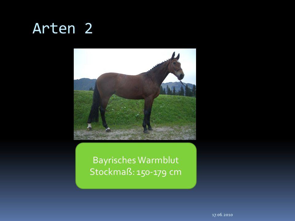 17.06.2010 Bayrisches Warmblut Stockmaß: 150-179 cm Arten 2