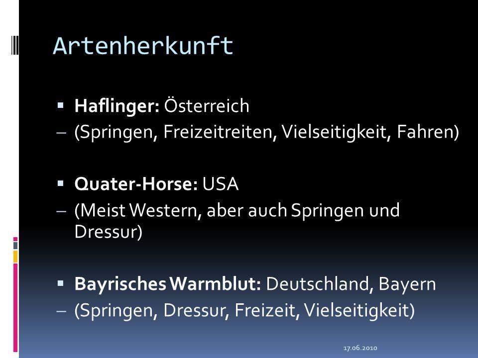 Artenherkunft Haflinger: Österreich (Springen, Freizeitreiten, Vielseitigkeit, Fahren) Quater-Horse: USA (Meist Western, aber auch Springen und Dressu