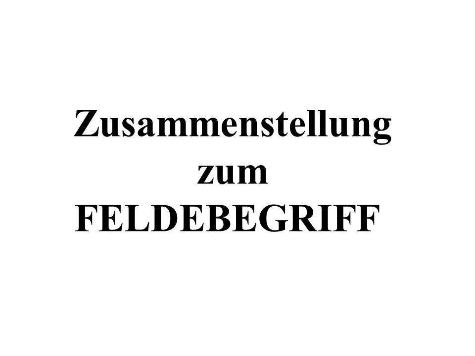 Zusammenstellung zum FELDEBEGRIFF