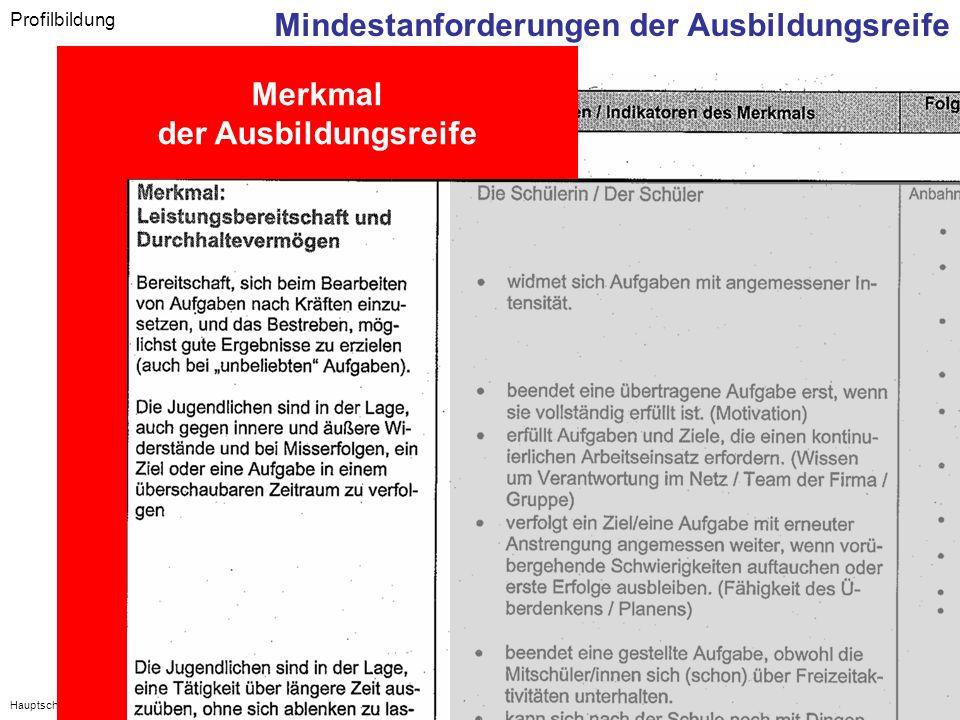 Hauptschulinitiative - Regionalkongress Oberfranken - 6. Juli 2007 Profilbildung Mindestanforderungen der Ausbildungsreife Merkmal der Ausbildungsreif