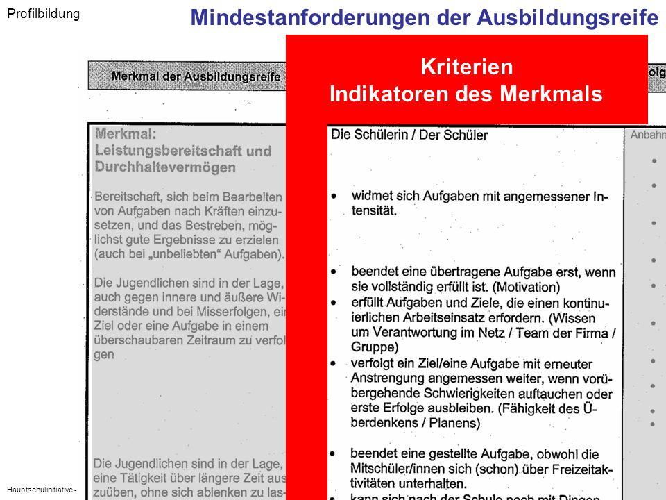 Hauptschulinitiative - Regionalkongress Oberfranken - 6. Juli 2007 Profilbildung Mindestanforderungen der Ausbildungsreife Kriterien Indikatoren des M