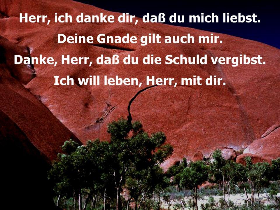 Ich will dir danken, 171 T+M: Peter Strauch © Hänssler Verlag