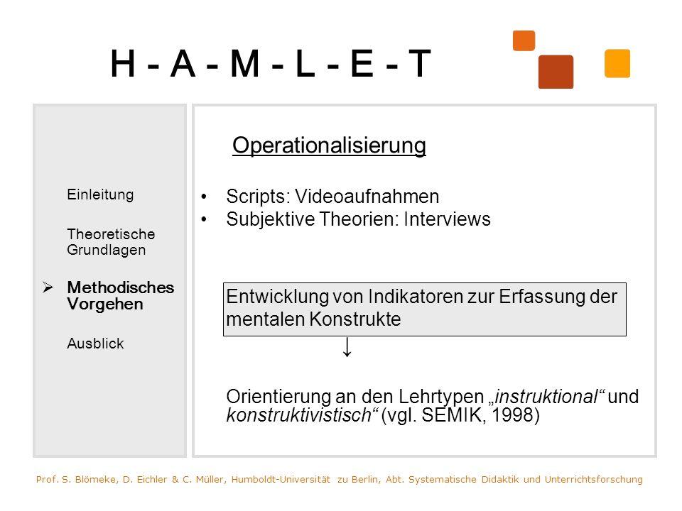 H - A - M - L - E - T Einleitung Theoretische Grundlagen Methodisches Vorgehen Ausblick Operationalisierung Scripts: Videoaufnahmen Subjektive Theorie