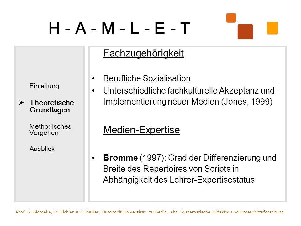 H - A - M - L - E - T Einleitung Theoretische Grundlagen Methodisches Vorgehen Ausblick Fachzugehörigkeit Berufliche Sozialisation Unterschiedliche fa