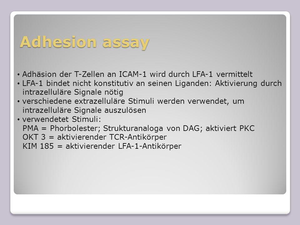 Adhesion assay Adhäsion der T-Zellen an ICAM-1 wird durch LFA-1 vermittelt LFA-1 bindet nicht konstitutiv an seinen Liganden: Aktivierung durch intraz