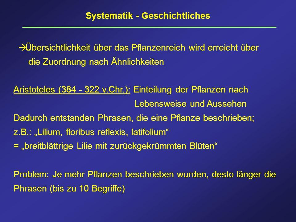 Systematik - Geschichtliches Übersichtlichkeit über das Pflanzenreich wird erreicht über die Zuordnung nach Ähnlichkeiten Aristoteles (384 - 322 v.Chr