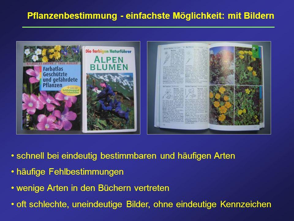 Pflanzenbestimmung - einfachste Möglichkeit: mit Bildern schnell bei eindeutig bestimmbaren und häufigen Arten häufige Fehlbestimmungen wenige Arten i