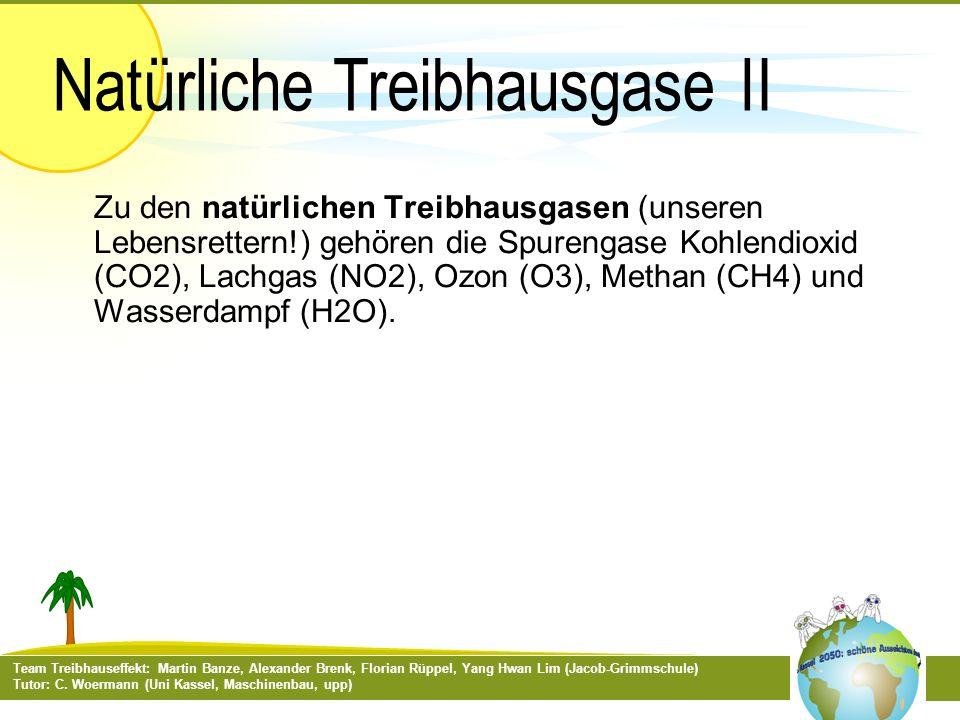 Team Treibhauseffekt: Martin Banze, Alexander Brenk, Florian Rüppel, Yang Hwan Lim (Jacob-Grimmschule) Tutor: C. Woermann (Uni Kassel, Maschinenbau, u