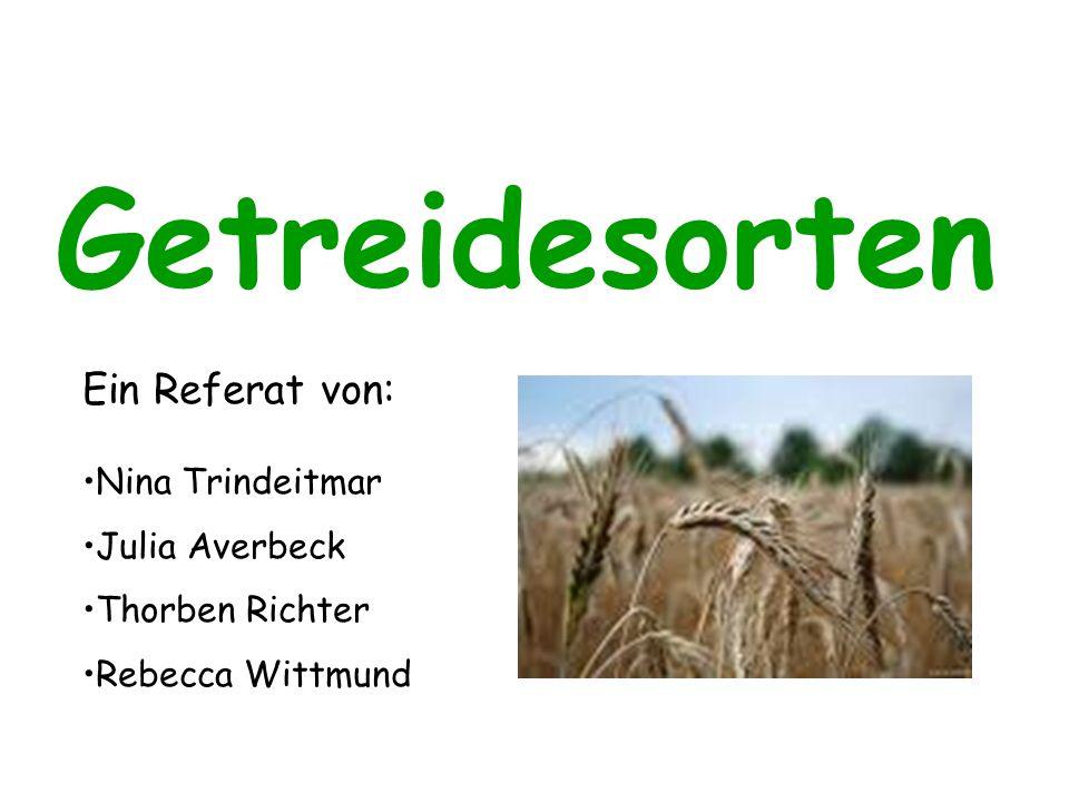 Getreidesorten Ein Referat von: Nina Trindeitmar Julia Averbeck Thorben Richter Rebecca Wittmund
