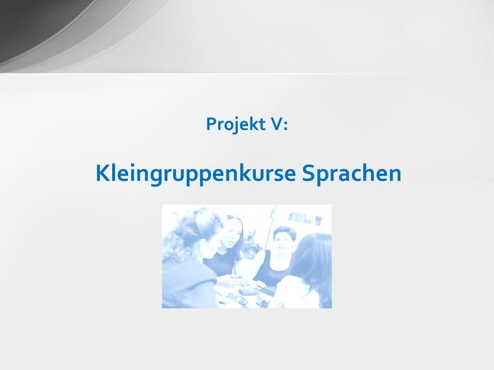 Projekt V: Kleingruppenkurse Sprachen