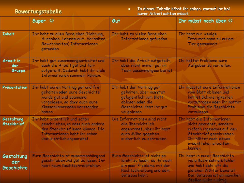 Bewertungstabelle In dieser Tabelle könnt ihr sehen, worauf ihr bei eurer Arbeit achten müsst: In dieser Tabelle könnt ihr sehen, worauf ihr bei eurer