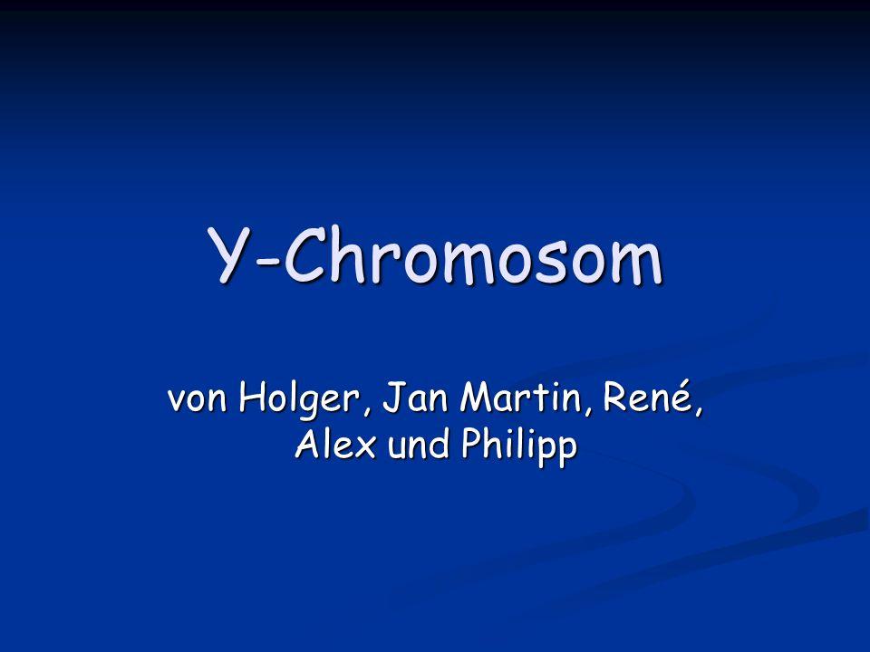 Y-Chromosom von Holger, Jan Martin, René, Alex und Philipp