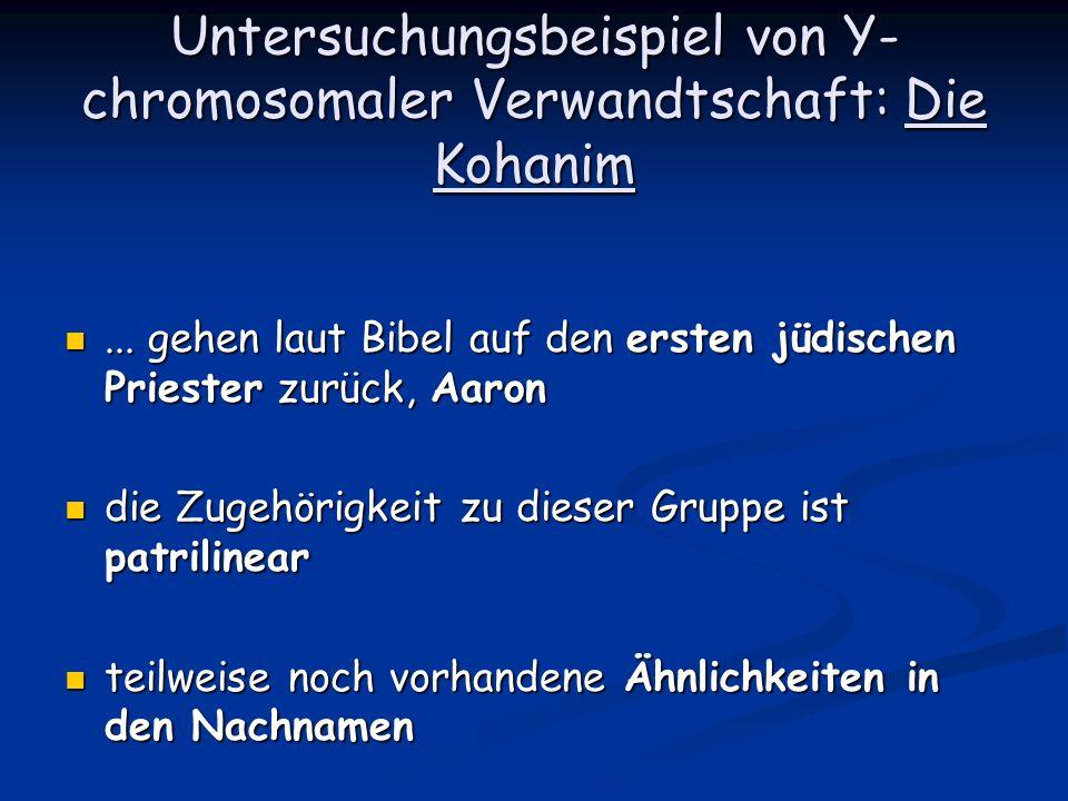 Untersuchungsbeispiel von Y- chromosomaler Verwandtschaft: Die Kohanim... gehen laut Bibel auf den ersten jüdischen Priester zurück, Aaron... gehen la