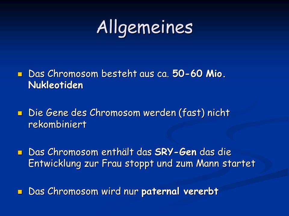 Allgemeines Das Chromosom besteht aus ca. 50-60 Mio. Nukleotiden Das Chromosom besteht aus ca. 50-60 Mio. Nukleotiden Die Gene des Chromosom werden (f