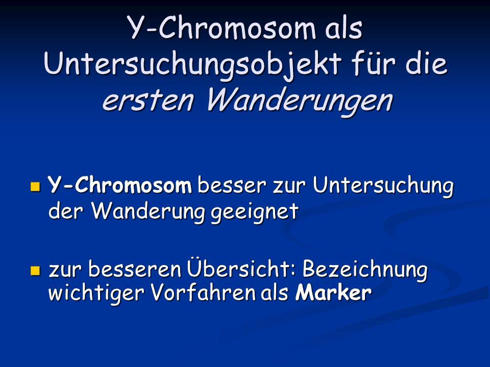 Y-Chromosom als Untersuchungsobjekt für die ersten Wanderungen Y-Chromosom besser zur Untersuchung der Wanderung geeignet Y-Chromosom besser zur Unter