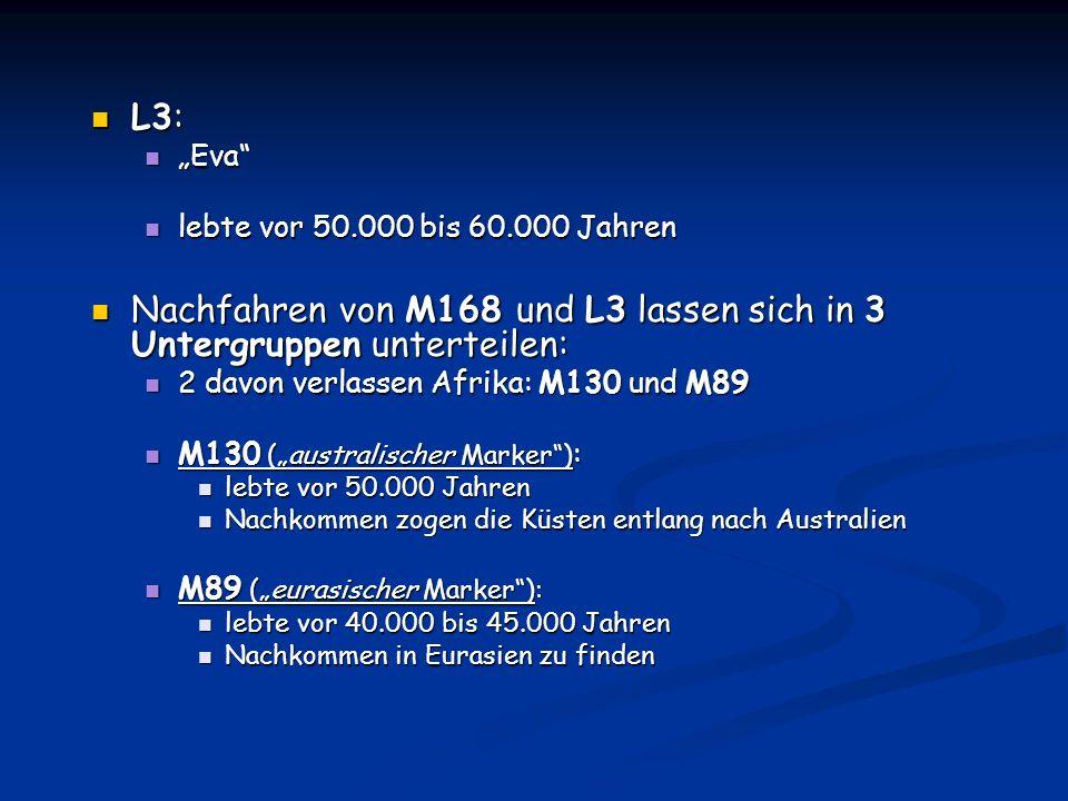 L3: L3: Eva Eva lebte vor 50.000 bis 60.000 Jahren lebte vor 50.000 bis 60.000 Jahren Nachfahren von M168 und L3 lassen sich in 3 Untergruppen unterte