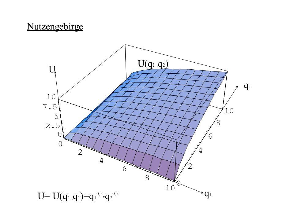 Nutzengebirge, Höhenlinien q2q2 q1q1 U= U(q 1, q 1 )=q 1 * q 2 =const. 0,5