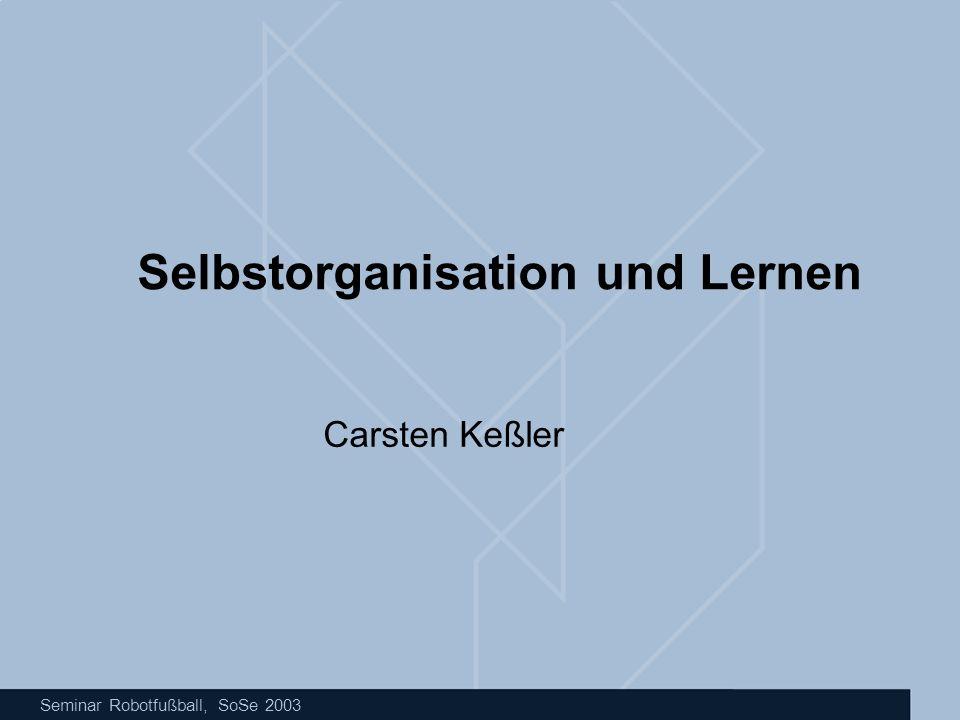 Seminar Robotfußball, SoSe 2003 Selbstorganisation und Lernen Carsten Keßler