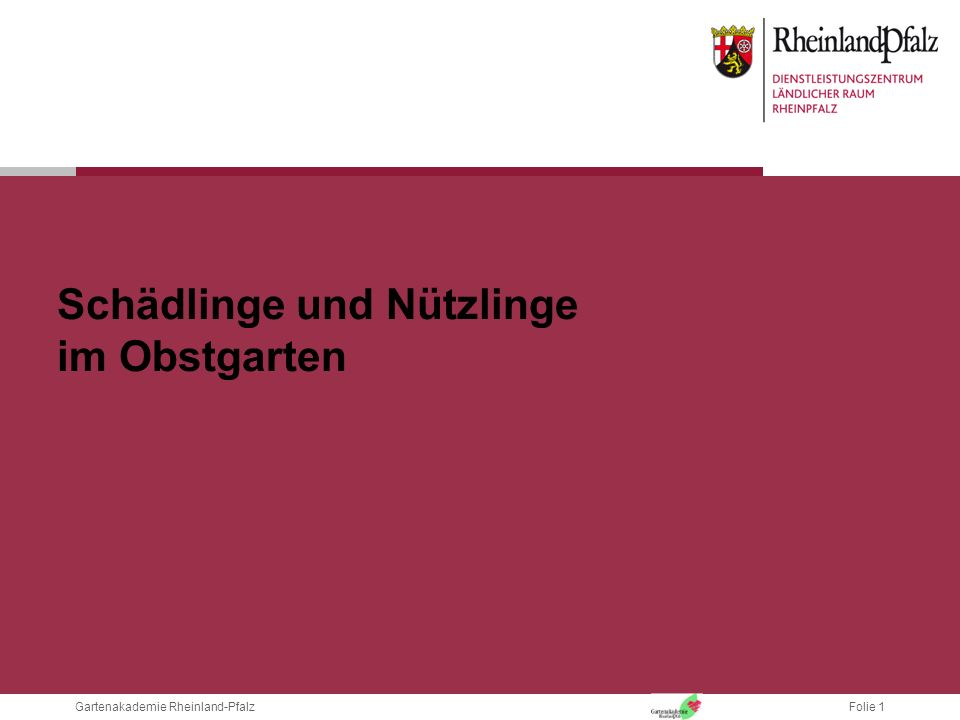Folie 1Gartenakademie Rheinland-Pfalz Schädlinge und Nützlinge im Obstgarten