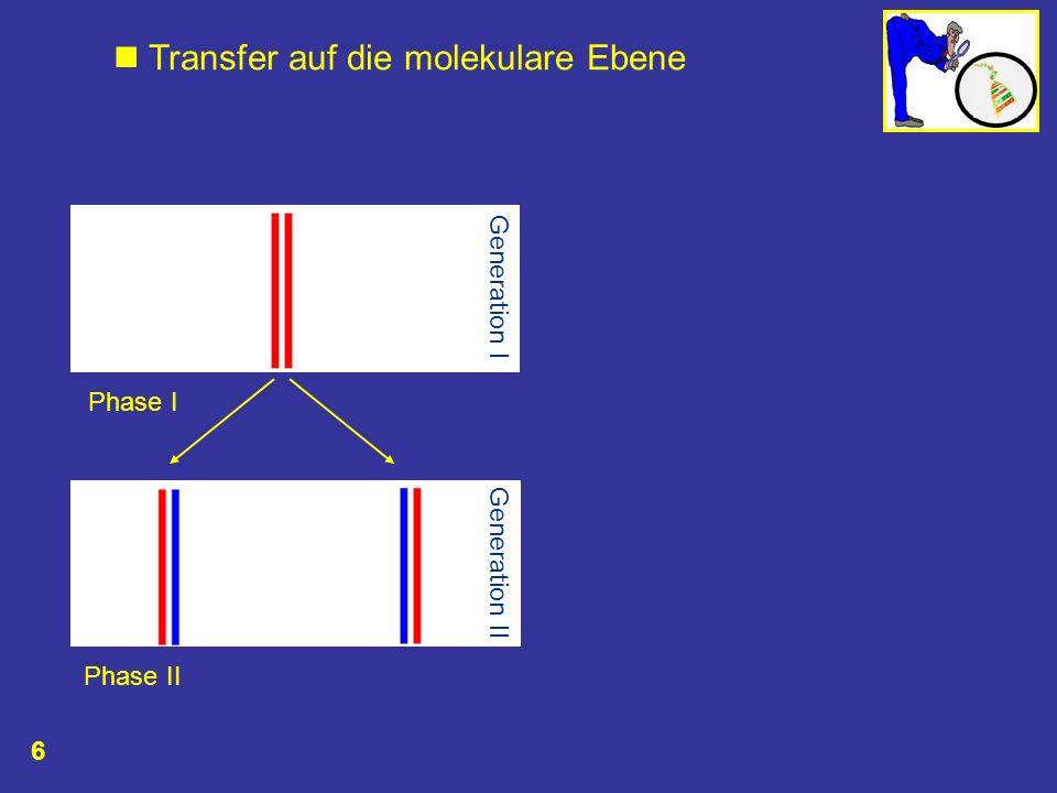 Transfer auf die molekulare Ebene Phase I Phase II Generation II Generation I 6
