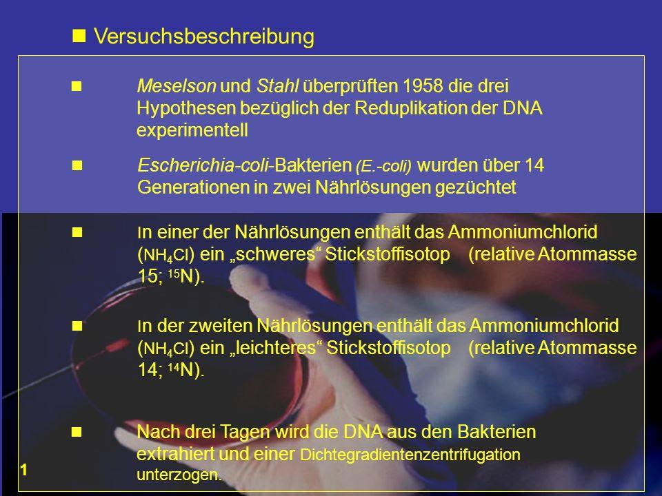 Versuchsbeschreibung Meselson und Stahl überprüften 1958 die drei Hypothesen bezüglich der Reduplikation der DNA experimentell Escherichia-coli-Bakter