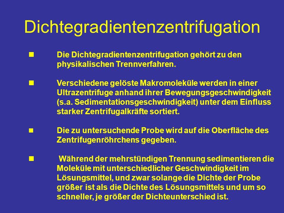 Dichtegradientenzentrifugation Die Dichtegradientenzentrifugation gehört zu den physikalischen Trennverfahren. Verschiedene gelöste Makromoleküle werd