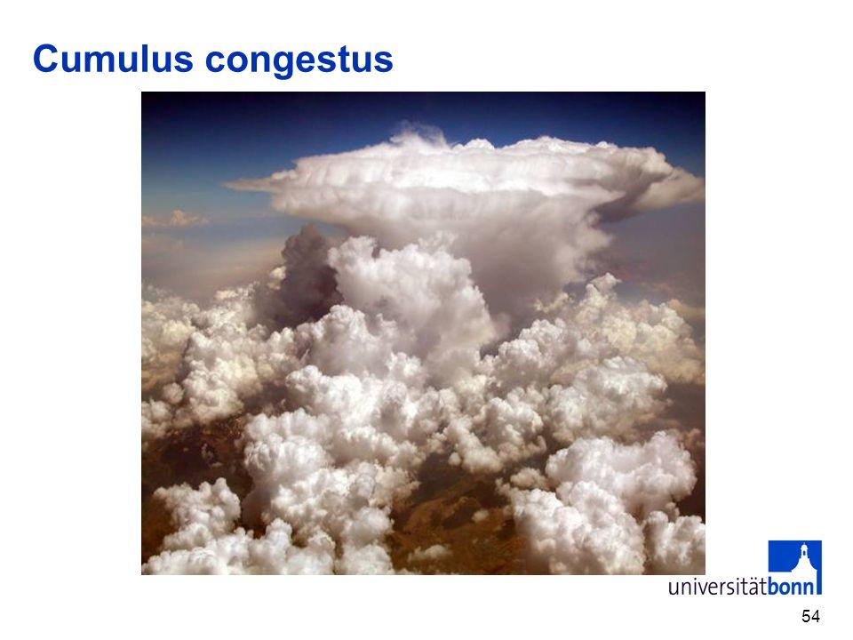 54 Cumulus congestus